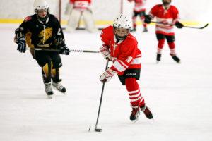 зимние командные виды спорта