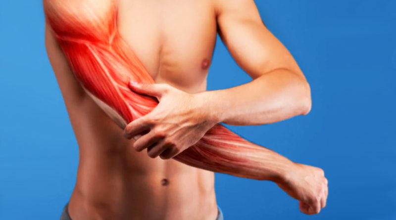 Почему болят мышцы после тренировки и как они увеличиваются